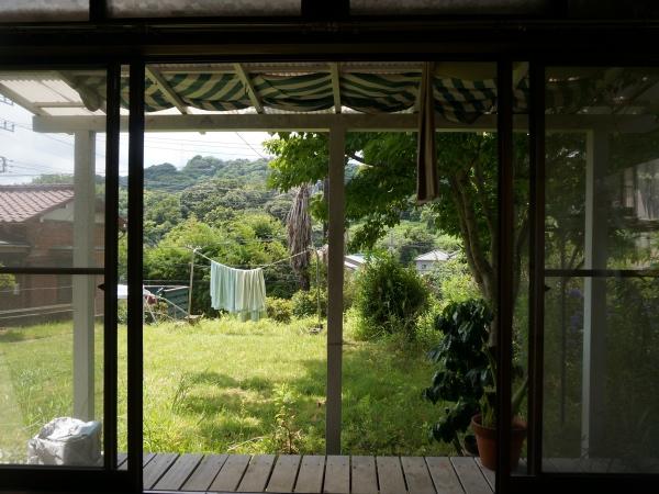 家から庭を眺める。なんてピースなんでしょう。昼寝したい。