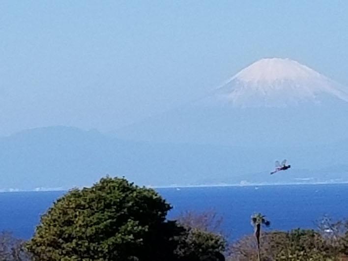 室内からは天気が良ければ富士山も綺麗に遠望します。