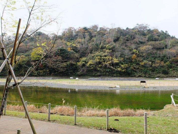 永福寺跡地。芝生の公園でピクニック!気持ちいいです。