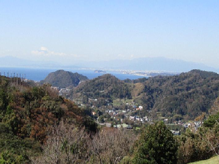 葉山の山。ハイキングコースもございます。変わりゆく季節を感じながら歩きましょう。