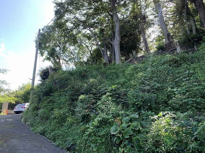 この斜面に地下ガレージ造ったら最高だな。