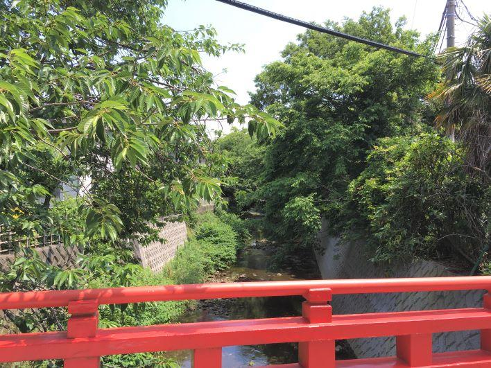 蛇行する川の流れを見るとき心が休まります。