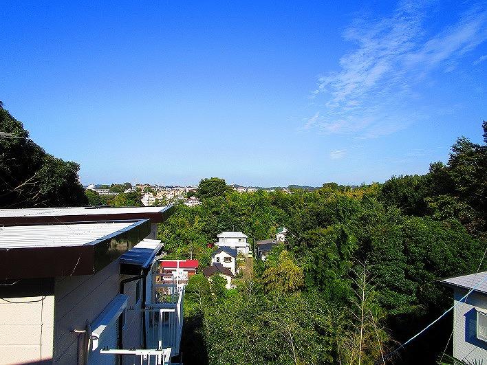 出窓からの贅沢な眺望。聞こえてくる鳥の囀りとこの景色に癒されます。