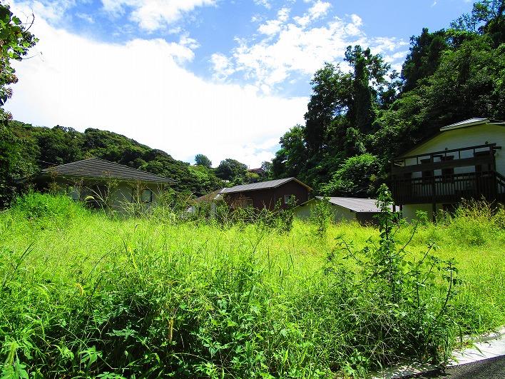 稲村ガ崎4丁目の奥。森に囲まれた土地。