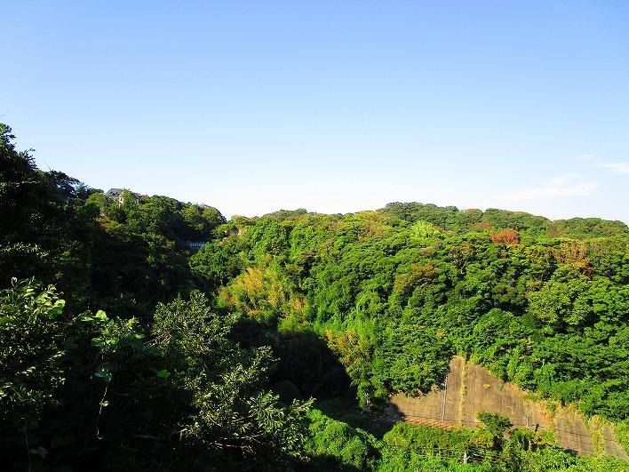 まんだら堂やぐら群やお猿畠の大切岸など、この山の中に見どころが点在しています。