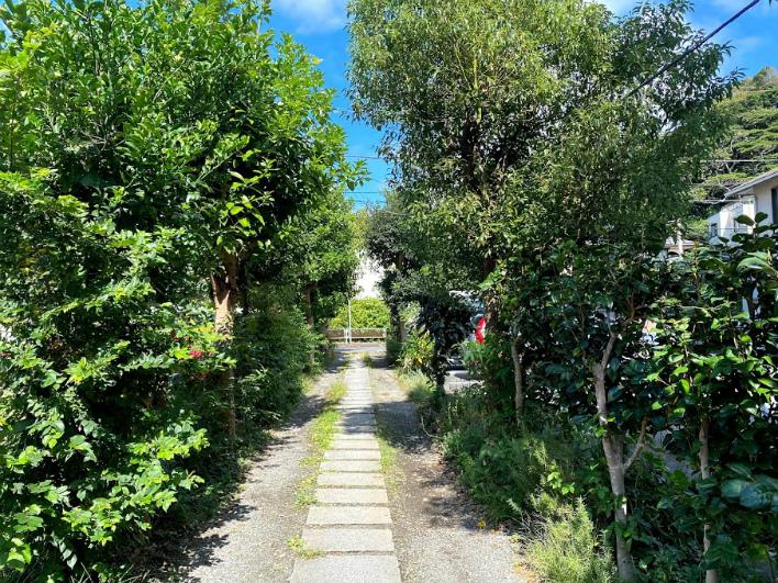 家までのアプローチ。木々が両サイドにあり、歩いていて気持ちがいい。