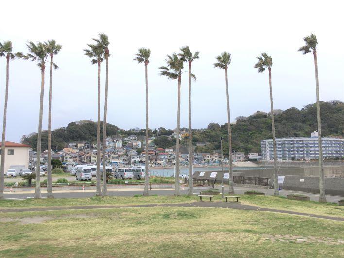 逗子マリーナの異国な感じと漁港のローカルな感じが対照的です。