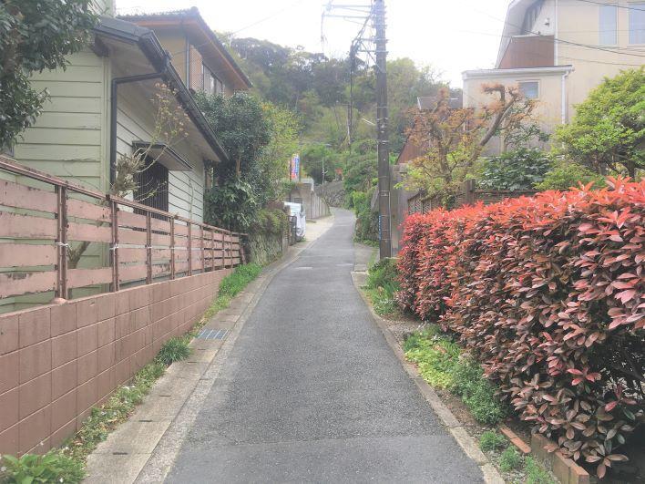 生垣がきれいな道をすすみます。