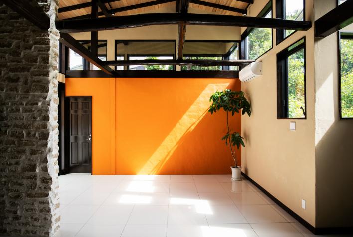 オレンジの壁と、緑もりもりの借景。とにかく、気持ちがいい空間。家の中にもわんさか緑を置きたくなる!
