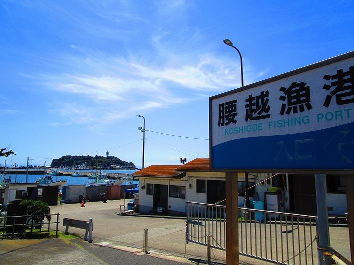 腰越と言えば鎌倉唯一の漁港もあります。