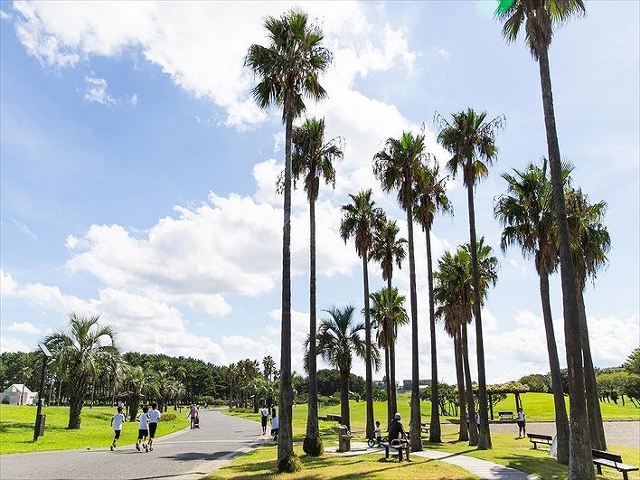 辻堂海浜公園。自転車が練習できる交通公園もあります。