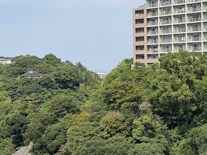 物件すぐの高台からは東京湾がチラッと見えています