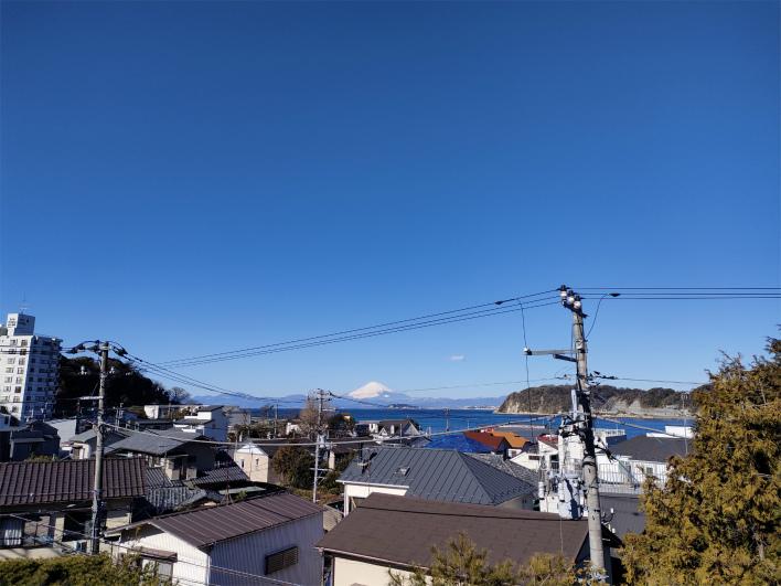 現地。屋敷の濃い緑と石垣の擁壁がとてもカッコいい。建物は解体後に引渡し予定です。