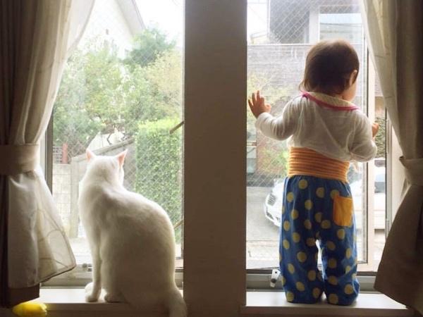 窓からの眺めがいい、素敵なお家が見つかるといいなぁ。
